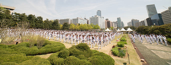 Largest Taekwondo display wide shot