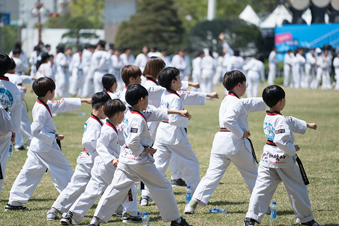Largest Taekwondo lesson young kids