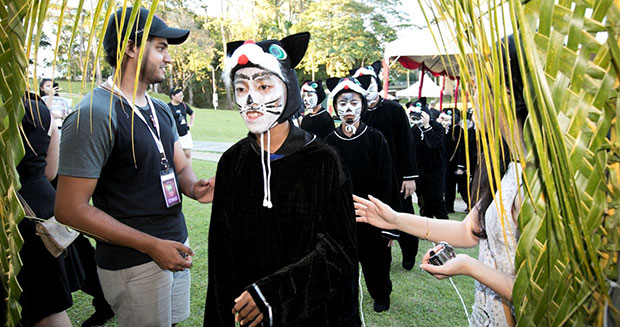 Largest gathering of people dressed as cats counting