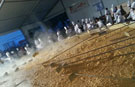 Largest omelette world record set by Portuguese chefs