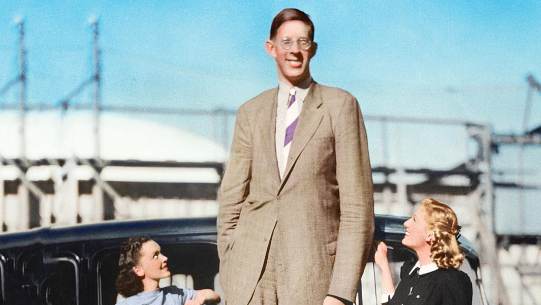 A history of record-breaking giants 100 years after the tallest man in the world was born