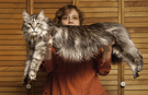 RIP Stewie: World's longest cat passes away