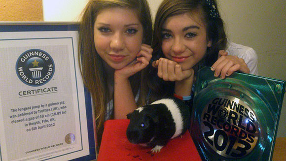 My Story: Chloe Macari - owner of Truffles, record holder for Longest jump by a guinea pig