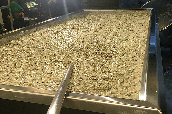 Largest green bean casserole 2