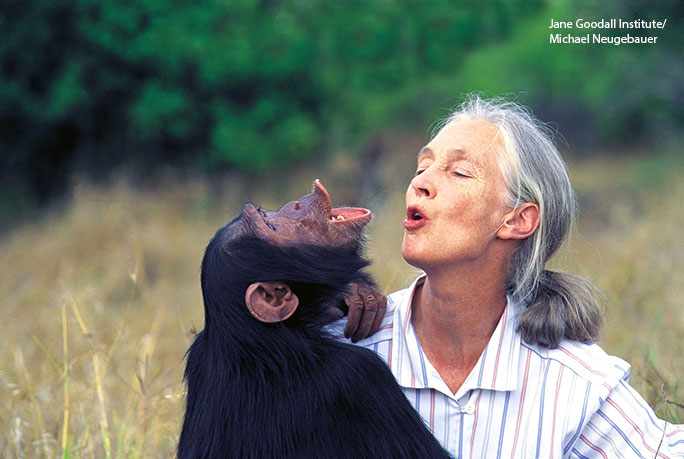 Jane-Goodall-with-chimp-in