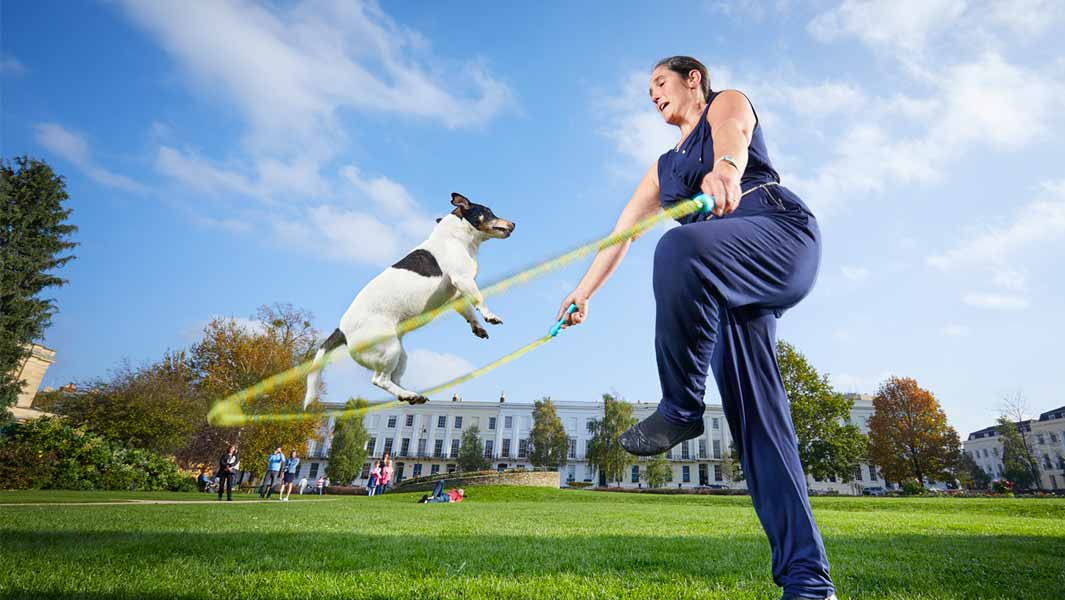 Meet record-breaking dogs and get 20% off your visit to the National Pet Show