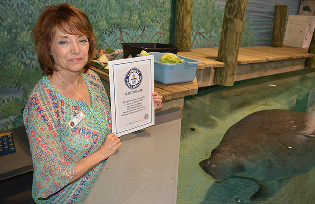 Snooty-and-Marilyn-Margold-with-Certificate