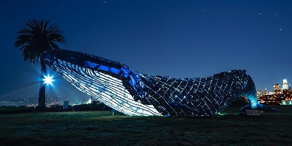 Whale_Large_Plastic_Sculpture_Object
