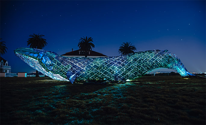 Recycled plastic whale at night