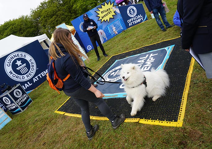 GWR's RECORD BARKERS stand was a hot-bed of canine talent over the weekend