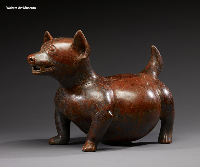 Often depicted in pre-Columbian art and sculpture, Techichi are widely thought to be the ancestors of the modern-day Chihuahua