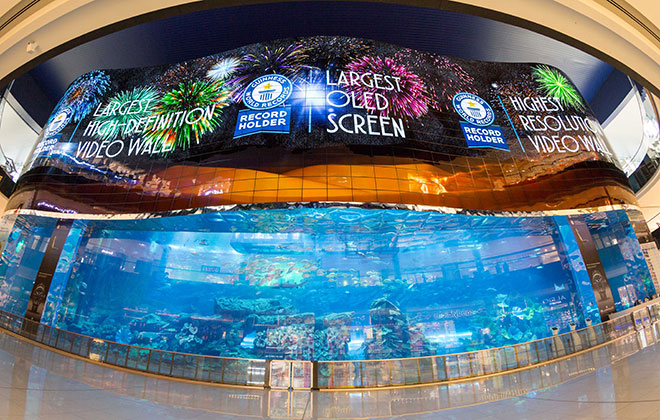 Largest OLED screen display