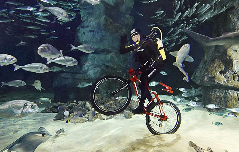 Deepest cycling underwater