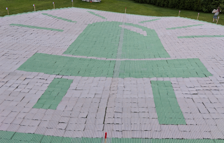 Largest recyclable egg box/carton mosaic (image)